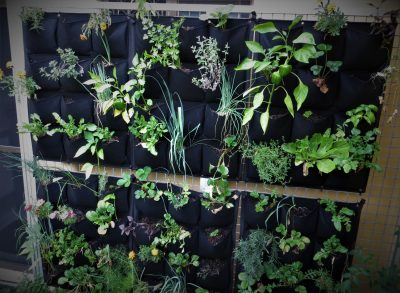 Go green this summer with a vertical garden - aluminium extrusion